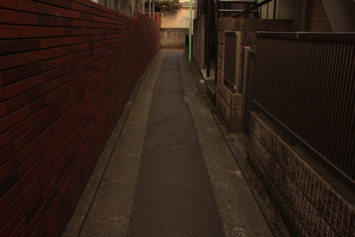 IMG_8369.jpg