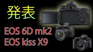 ついに登場!EOS6Dmk2(フルサイズ)とkissX9(APS)