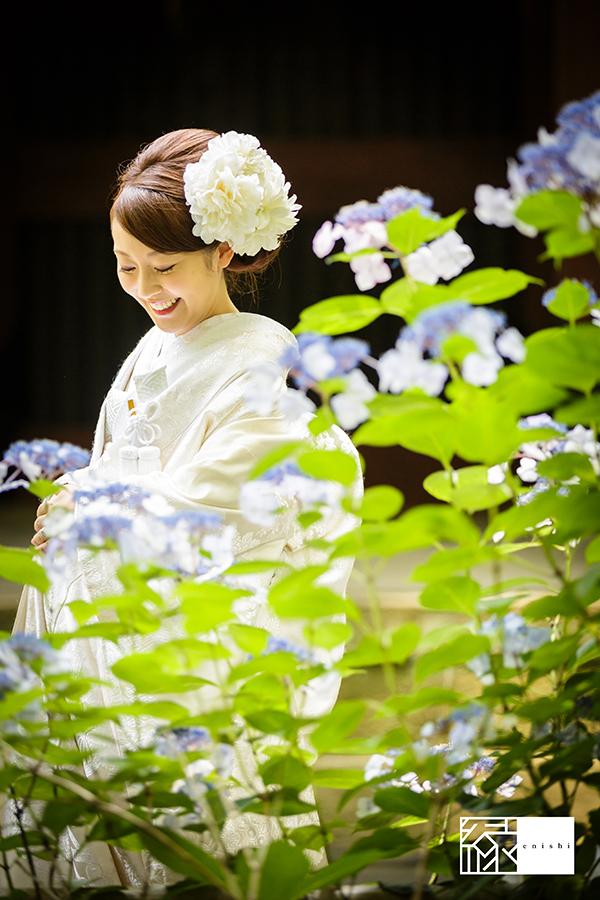 鎌倉紫陽花和装前撮り縁07