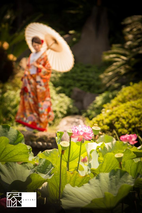 和装前撮り鎌倉夏10