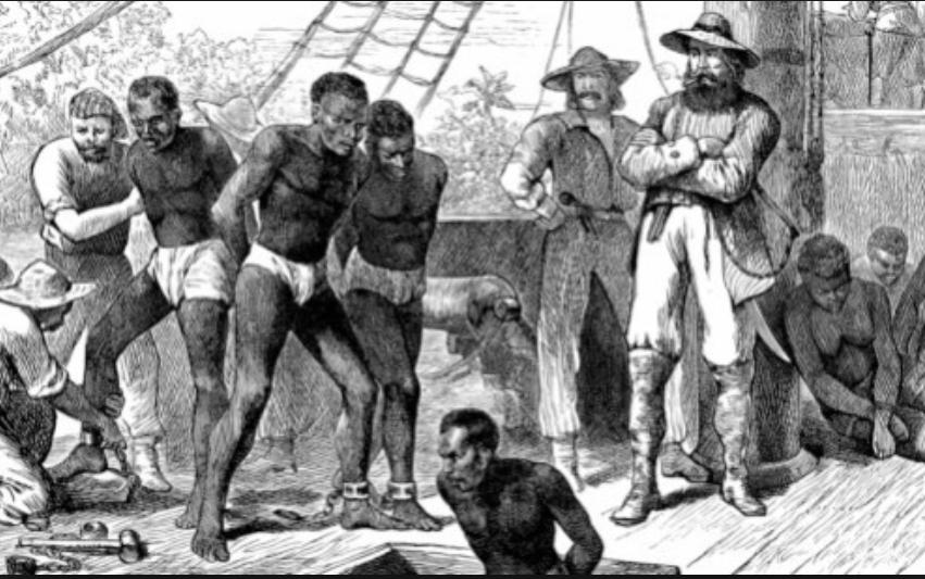 zz d奴隷狩りb