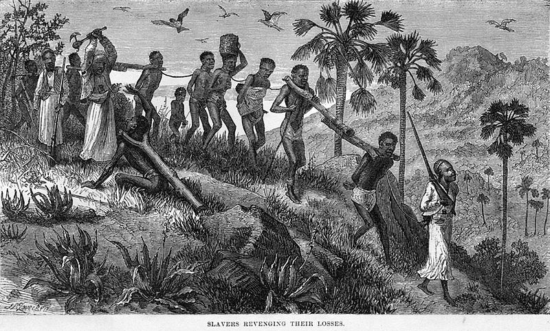 zz d奴隷狩り