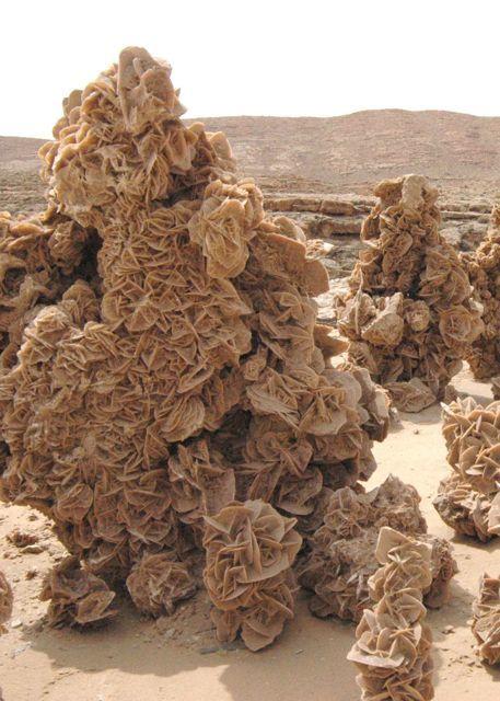 zzzz 砂漠のバラ