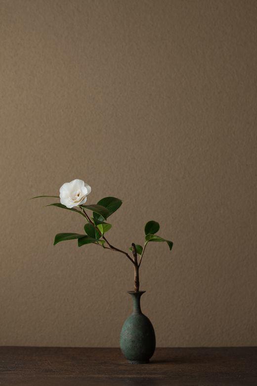 zzzzz Ikebana by Toshiro Kawase, Japan1