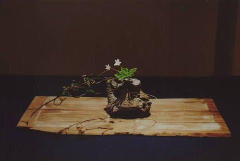zzzzz Ikebana by Toshiro Kawase, Japan9-1