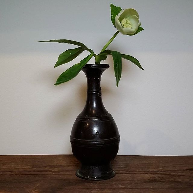 zzzzz 華瓶 砂張古銅請来型水瓶(鎌倉)に白い小さなクリスマスローズ