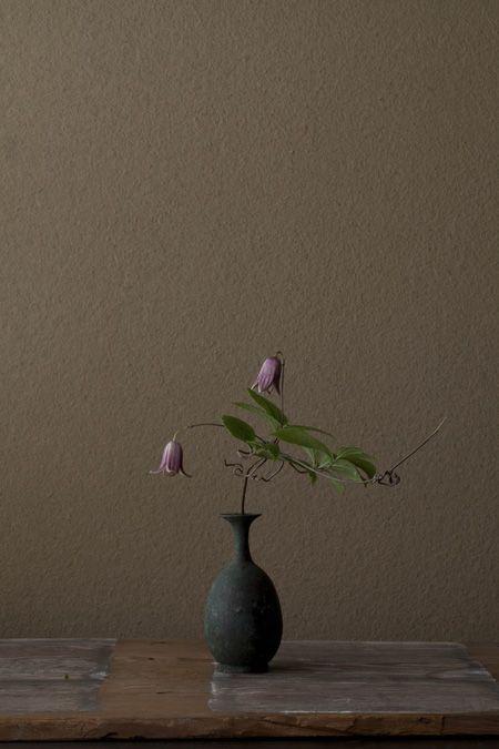 zzzzz Ikebana by Toshiro Kawase, Japan2 花・ミヤマハンショウ