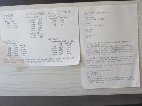 2A03 平井動物病院 0512