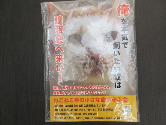 9A06 平井動物病院 0512