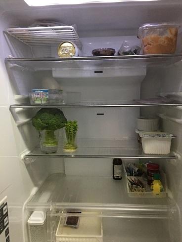 我が家の冷蔵庫 野菜の収納②