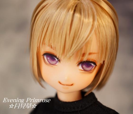 紫水晶01