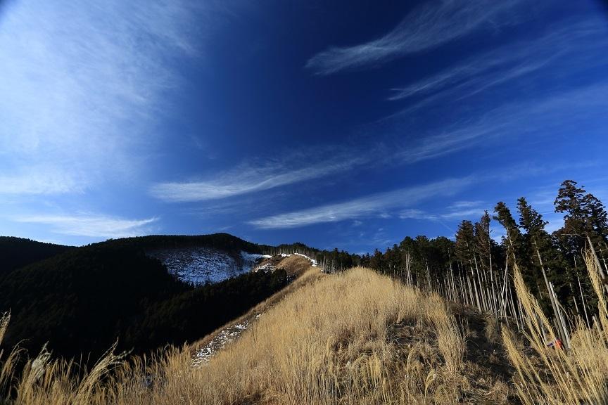 台高山脈、3