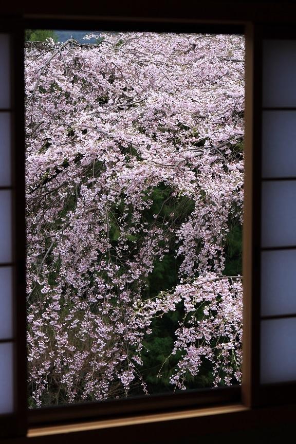 瀧蔵神社、5