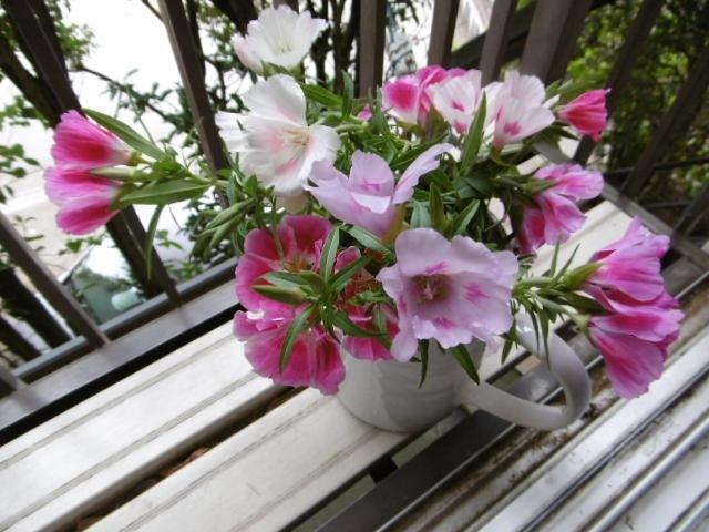 ゴデチヤ花瓶2
