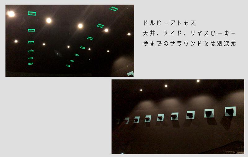 2017-06ajisai022.jpg