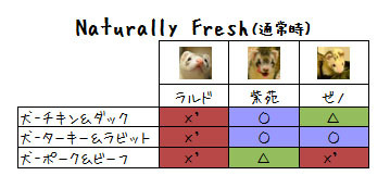 nf-dog2.jpg