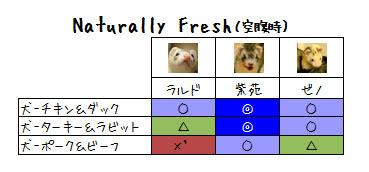 nf-dog3.jpg