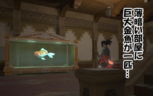 薄暗い部屋に巨大金魚