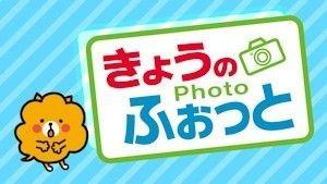 kyonophoto-title.jpg