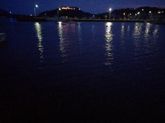 淡路島アジング
