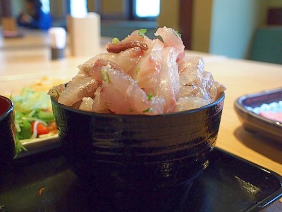 s-魚魚魚4P5043024