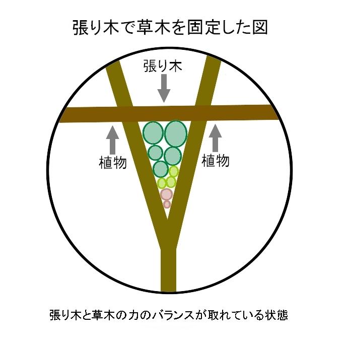 matagi_4.jpg