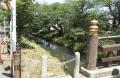 新河岸川 (7)