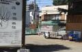 熊野神社 (7)