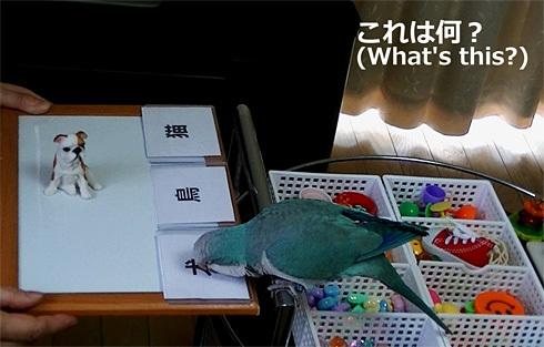 漢字1_4