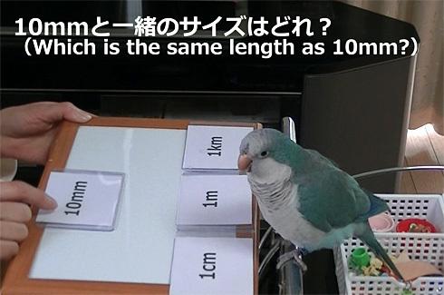 長さの単位1_2