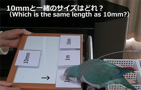 長さの単位1_3