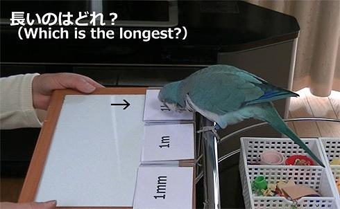 長さの単位1_7