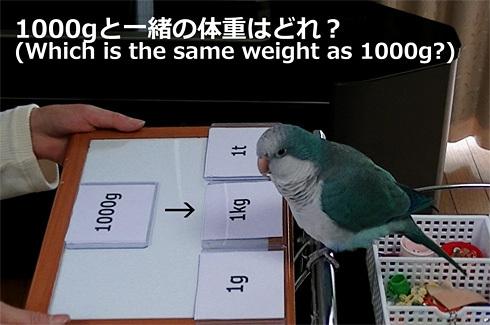 重さの単位1_2