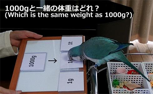 重さの単位1_3