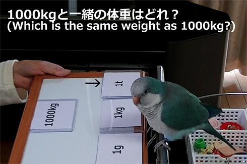 重さの単位1_4