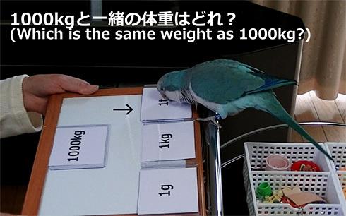 重さの単位1_5