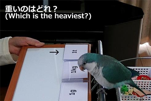 重さの単位1_6