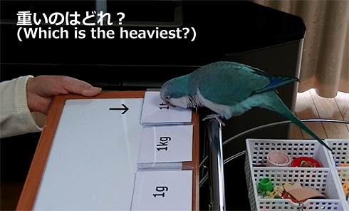 重さの単位1_7