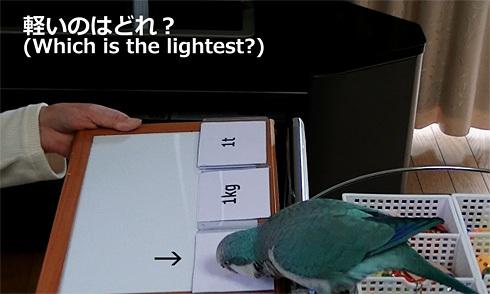 重さの単位1_9