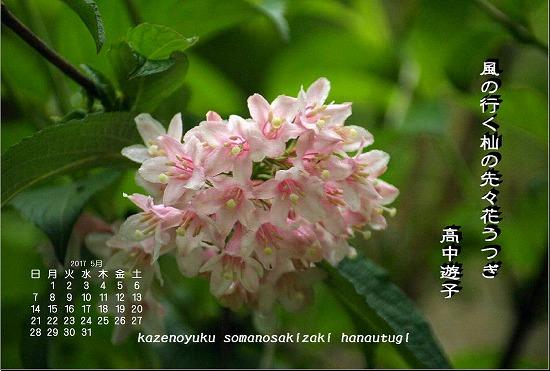 五月のカレンダー