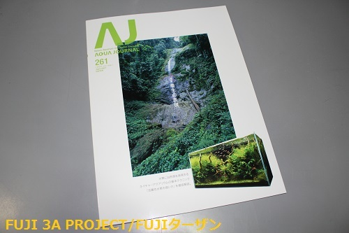 AJ261.jpg