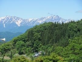 初夏の後立山IMG_7484