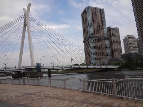 隅田川テラスから見る中央大橋