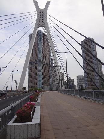 中央大橋上