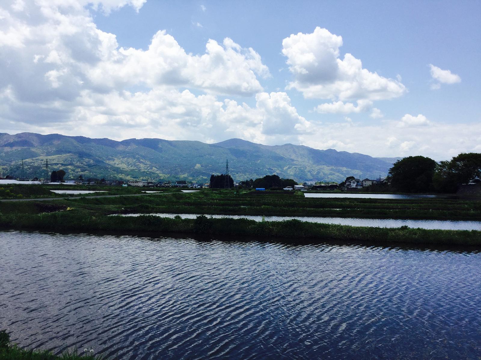 20170518_moriyasan_1s.jpg