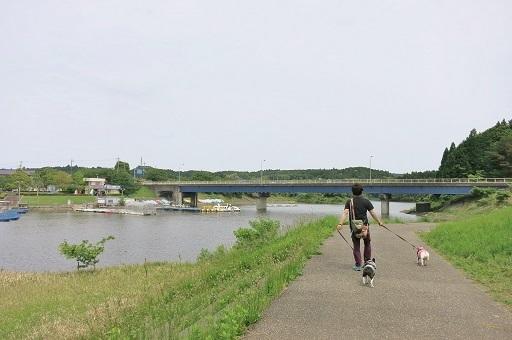 5-18湖畔散歩