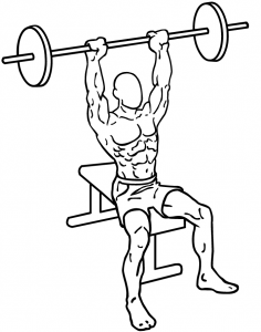 Seated-military-shoulder-press-1.png