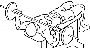Wide-grip-decline-bench-press-2-crop.png