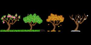 seasons-158601_960_720_20170611185039bb7.png