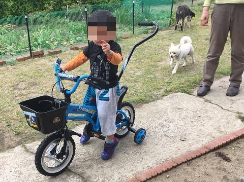 あゆ自転車